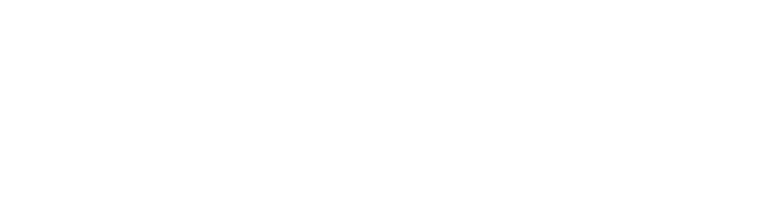 worldef-beyaz-kisa
